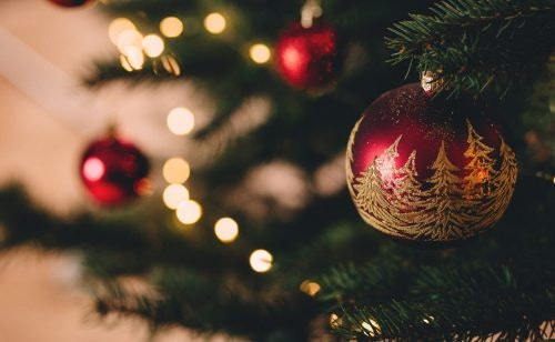 10 Online-Weihnachtsbaumhändler im Test