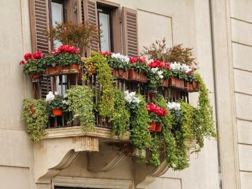 Urban Gardening grüner Balkon