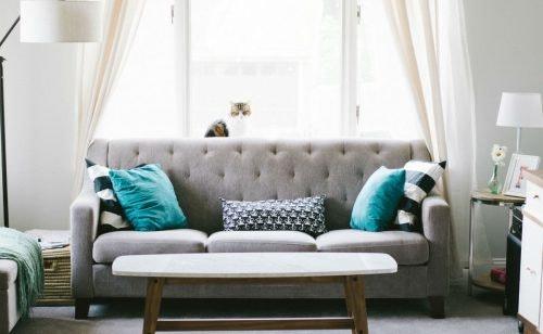 Moderne Sofas: So findest du das passende Sofa