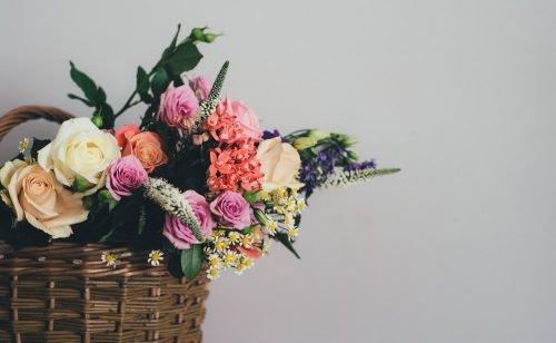 Blumen-Abo-Vergleich: Rosen sind rot…